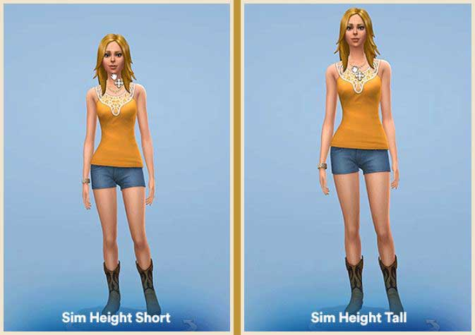Sim Height Slider