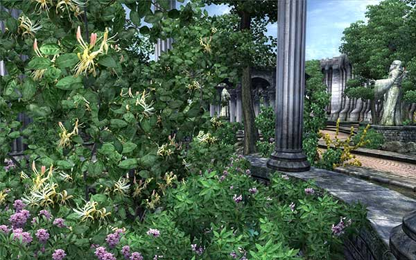 Improved-Trees-and-Flora